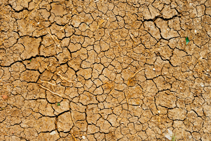 Drought Awareness and Advocacy